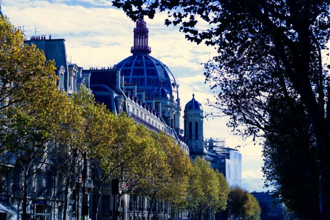 he-is-dapper_59-3